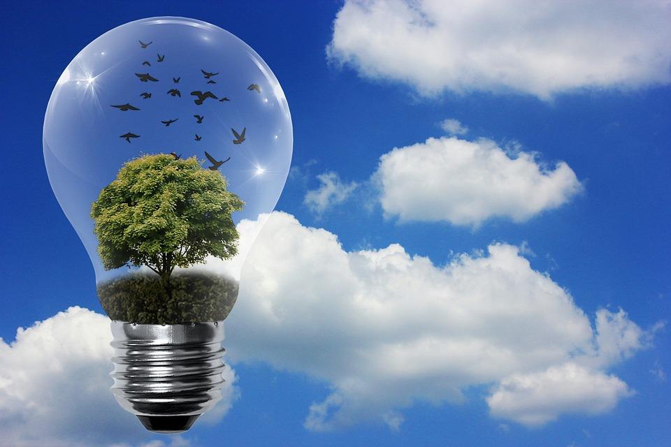 Cibo, pensieri ed energia potenziano la tua Energia? Ti ricaricano o ti scaricano?